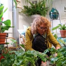 Rood & Bloem Leuke bloemen en planten kopen in Utrecht