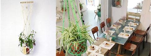 Workshops met bloemen en planten in Utrecht bij Rood&Bloem
